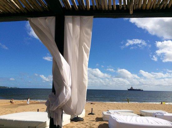 Serena Hotel Punta del Este: Praia