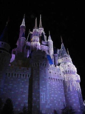 Magic Kingdom: Castle at Christmastime at night