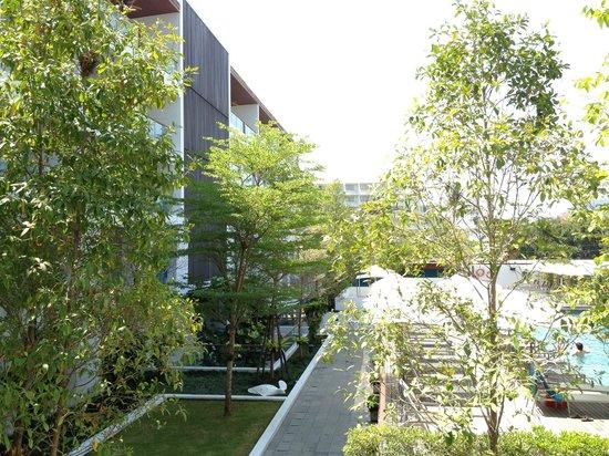 Nap Patong: 静かで緑も癒やされる。小鳥も遊びに来ます。