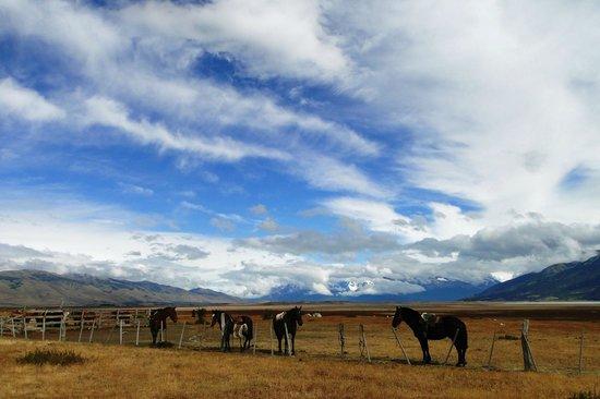 Estancia Rio Mitre: Horses are ready
