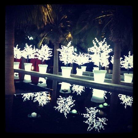 City Centre Mirdif: Случайно нашли выход световым парком