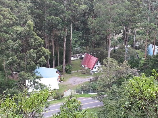Hotel Bambito Resort : VIEW3