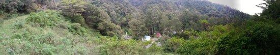 Hotel Bambito Resort : Top mountain view
