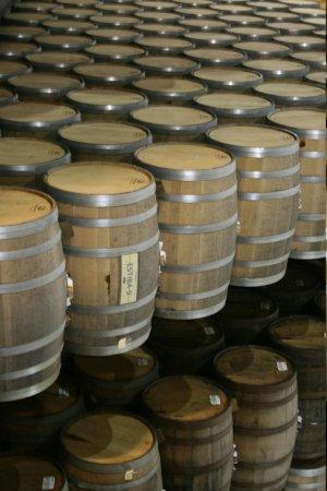 Destilería La Rojeña de José Cuervo: Barrels in La Rojeña