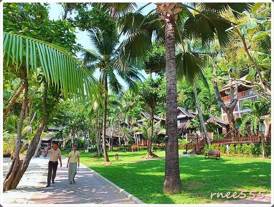 Ao Prao Resort: รอบๆรีสอร์ท