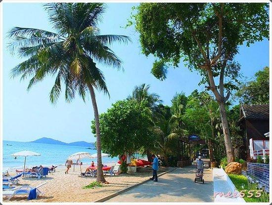Ao Prao Resort: บรรยากาศรอบรีสอร์ท