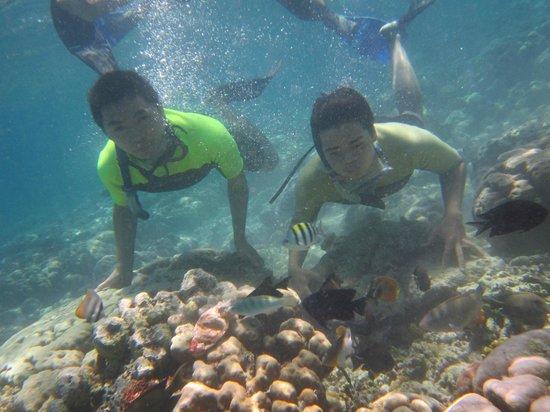 Bunaken National Marine Park : Snorkeling