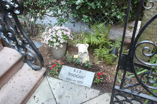 Poogan's Porch : Poogan's Grave