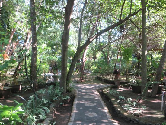 Alam Gili : Courtyard