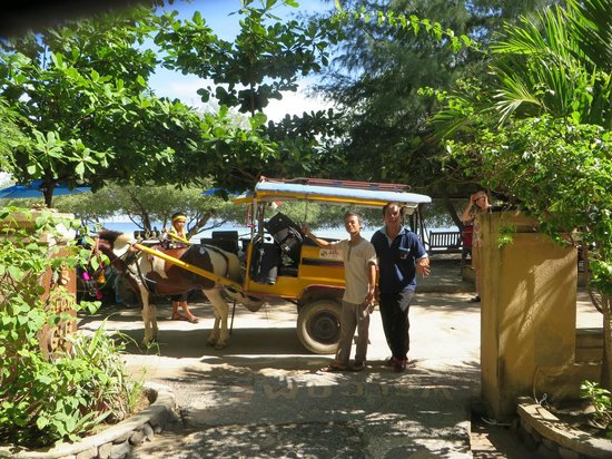 Alam Gili : Horse and cart