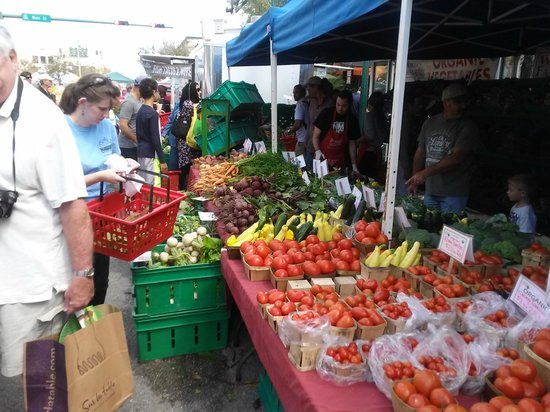 Sarasota Farmers Market: Only the Best Veggie's!