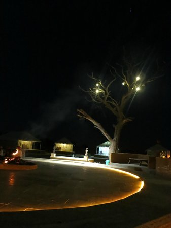 Damodra Desert Camp : Ground view at night when dance happens