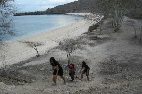 Pink Beach : Menaiki bukit untuk melihat Pantai Pink dari atas