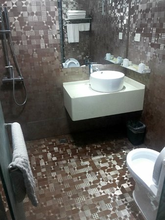 Hechi, China: The modernised bathroom