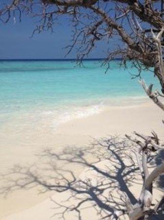 Thulhagiri Island Resort: :-)