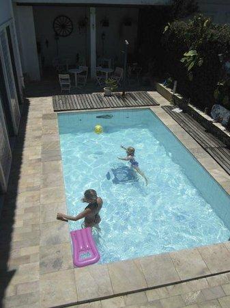BaronGarden: Pool