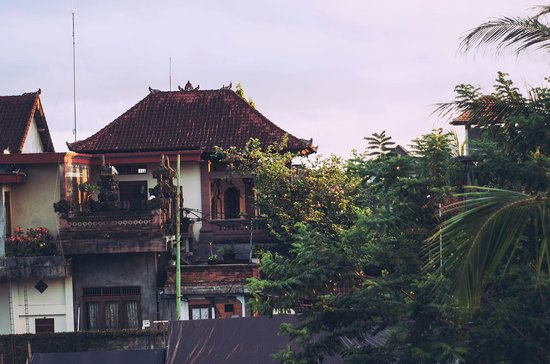 Puji Bungalow: View from Rooms