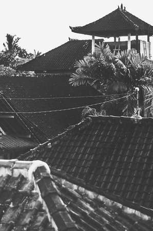 Puji Bungalow: Rooftops