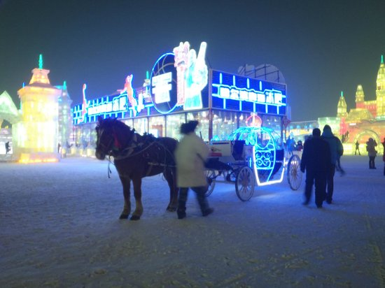 Harbin Ice and Snow World: Horse carriage spotted in the park