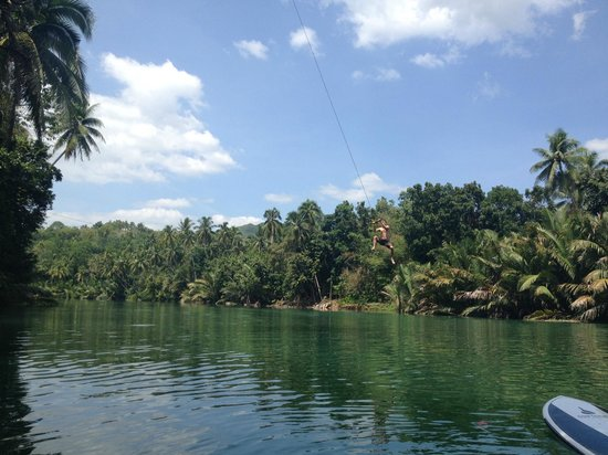 Fox & The Firefly Cottages : Rope Swing