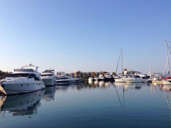Sani Beach: Marina dreaming