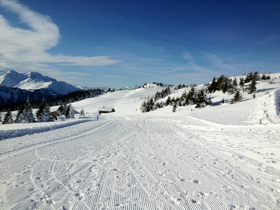Feldis/Veulden, Switzerland: Skigebiet