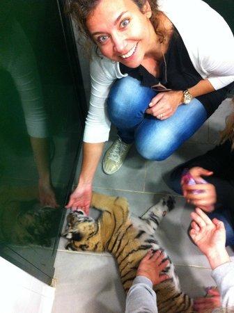 Zoo de Castellar