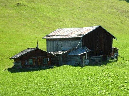 Berghotel Sternahaus: Stall unterwegs zum Mutta - unser Hausberg