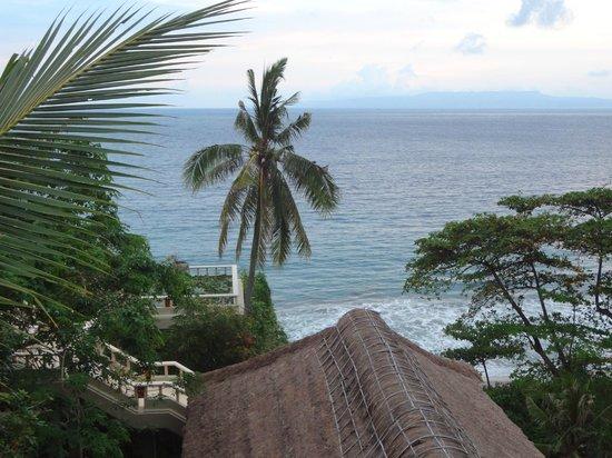 Beautiful Scenery (Down Below is Amankila Suite)