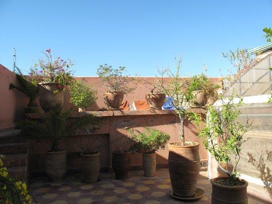 Riad Dar Othmane: la terrasse