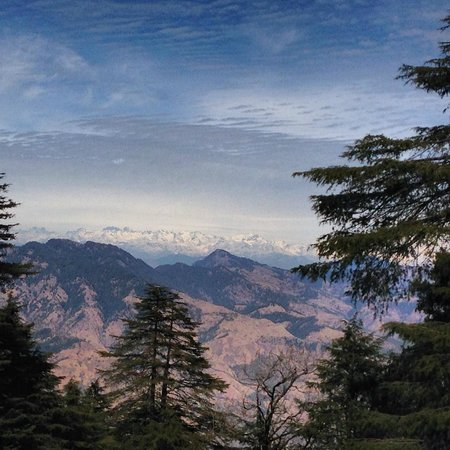 Wildflower Hall, Shimla in the Himalayas: view from the room