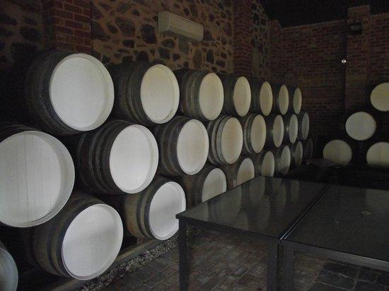 Taste the Barossa: Wine tour