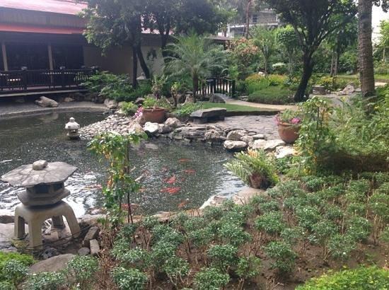 Dusit Thani Manila: the manicured garden