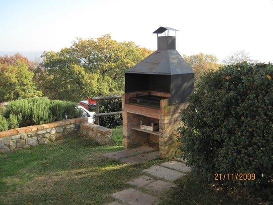 Agriturismo le Ghiandaie: Barbecue