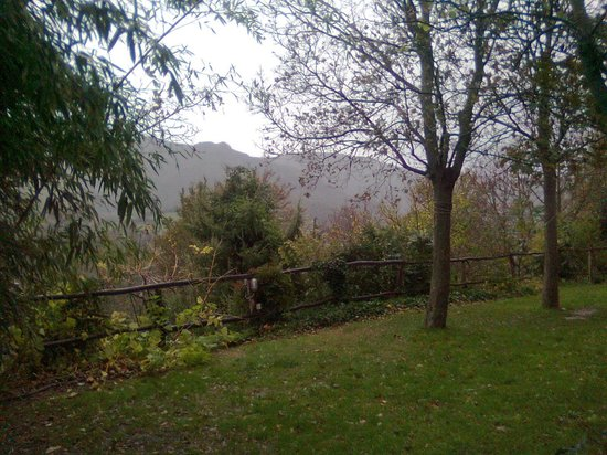 Agriturismo Il Bosco del Ciu : Scorci di esterno - Foto da celulare