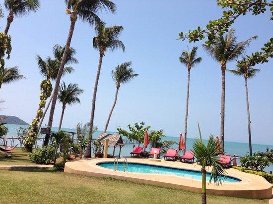 Samui Pier Resort: Pool.