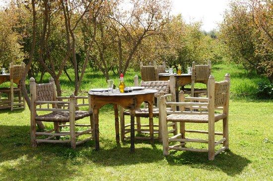 Jnane Tihihit: Déjeuner sur l'herbe