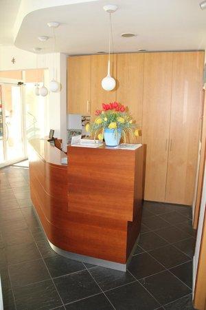 Hotel Rubicone: Reception