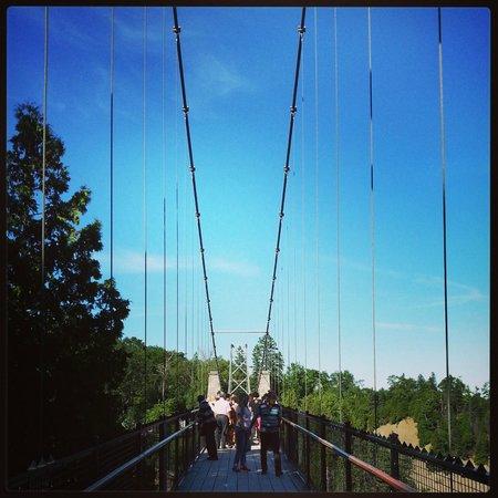 Montmorency Falls Park (Parc de la Chute-Montmorency): Le pont