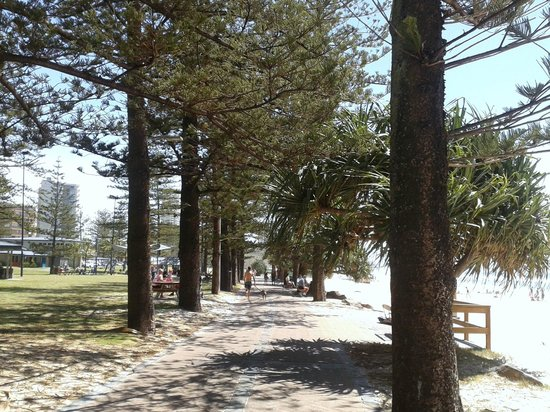 Burleigh Beach Tourist Park : Esplanade