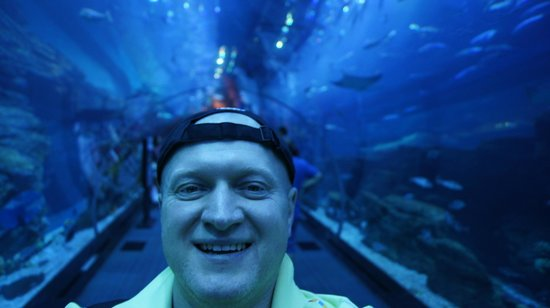 Dubai Aquarium & Underwater Zoo: Autor w szklanym tunelu