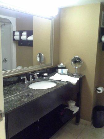 Crowne Plaza Columbus Downtown : Bathroom vanity
