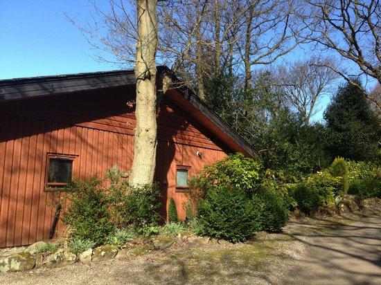 Spring Wood Lodges: Grondal