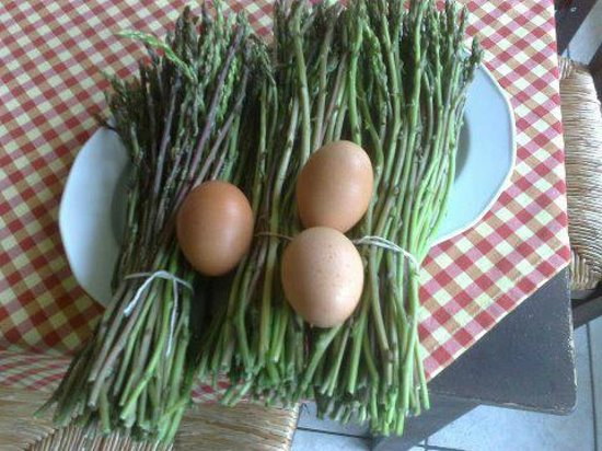 En Hatipi: Asparagus with eggs