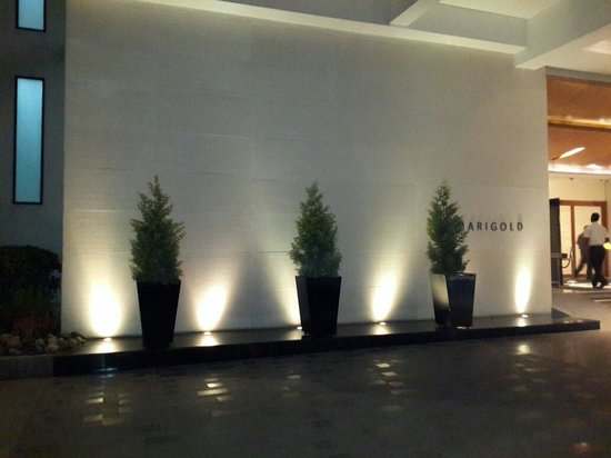 Marigold By Greenpark : Entrance to hotel