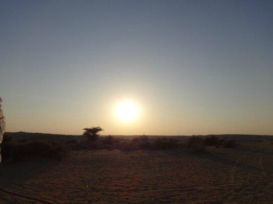 Royal Desert Camp Jaisalmer: camel safari
