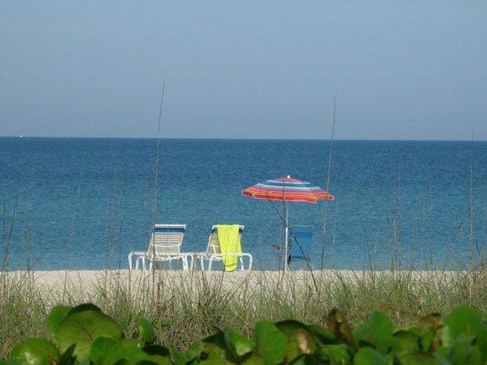 A Beach Retreat: Ready for a day on the beach at Beach Retreat