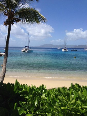 Cooper Island Beach Club: Manchioneel Bay Beach