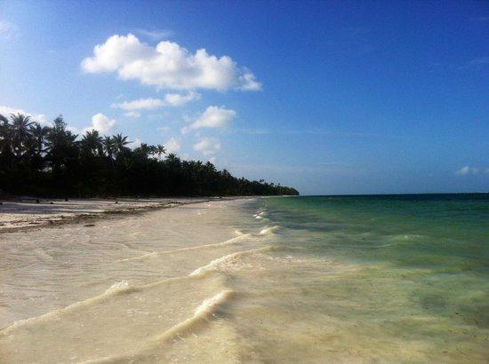 Twisted Palms Lodge & Restaurant: Bwejuu Beach