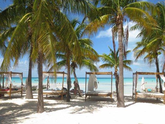 Hotel Villa Kiin: Another view from Buho's Beach Bar (breakfast location)